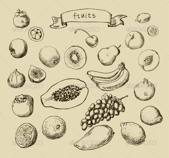 Fruit Sketches - Food Objects