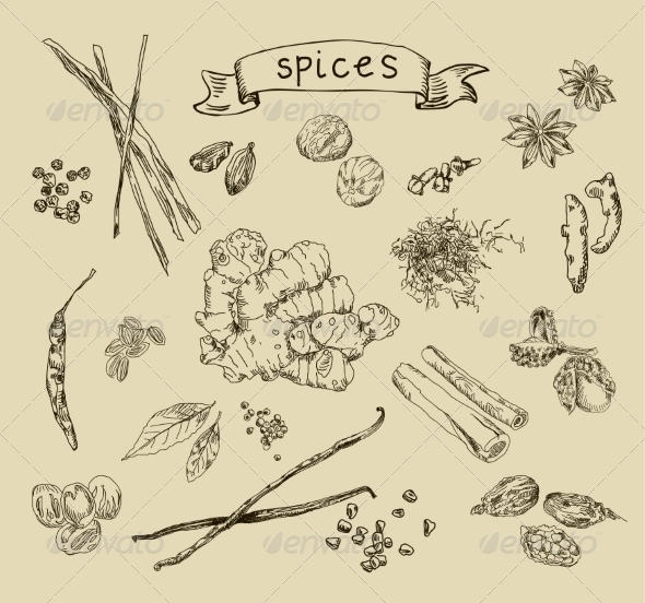 Spices Sketch - Food Objects