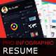 Pro Infographic Resume - GraphicRiver Item for Sale