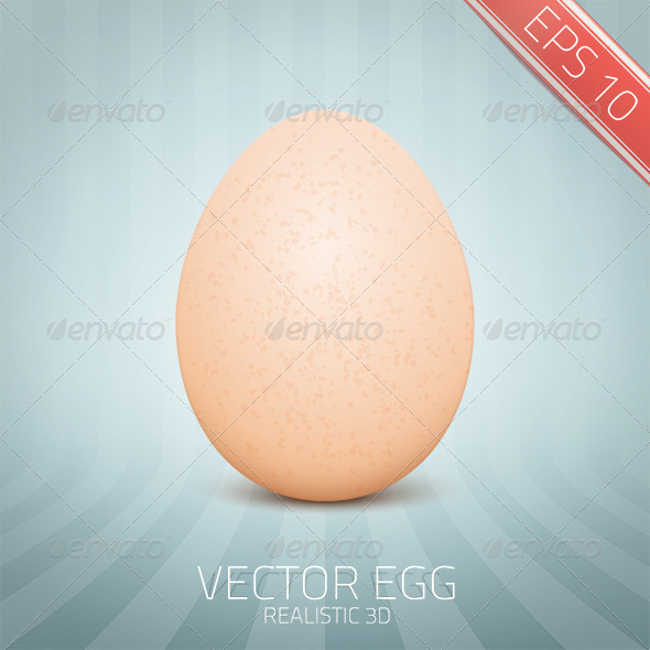 Vector Realistic Yellow Egg - Food Objects