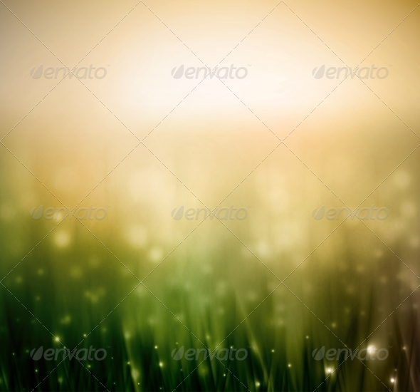 Background with Grass - Flowers & Plants Nature
