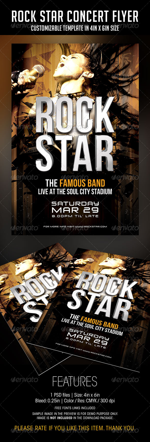 Rock Star Concert Flyer - Concerts Events