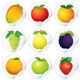 Vector Stickers with Fruits - GraphicRiver Item for Sale