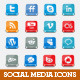 Social Network Icon Set - GraphicRiver Item for Sale