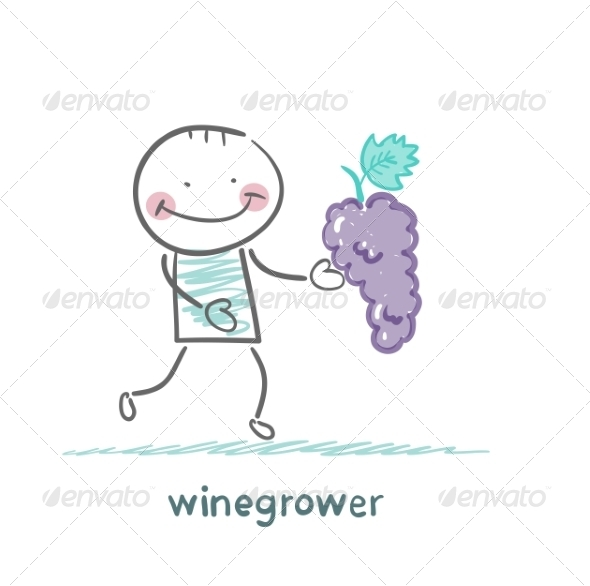 Winegrower Holds a Bunch of Grapes - People Characters