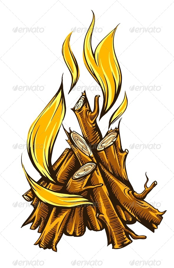 Flame Fire of Campfire with Firewood - Organic Objects Objects