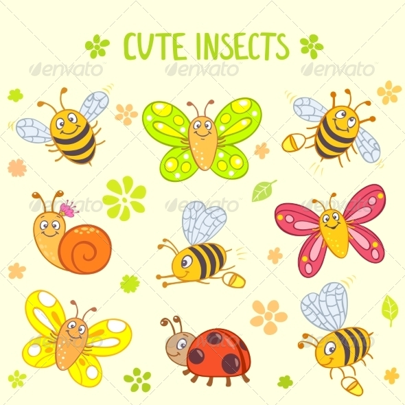 Insects - Miscellaneous Characters