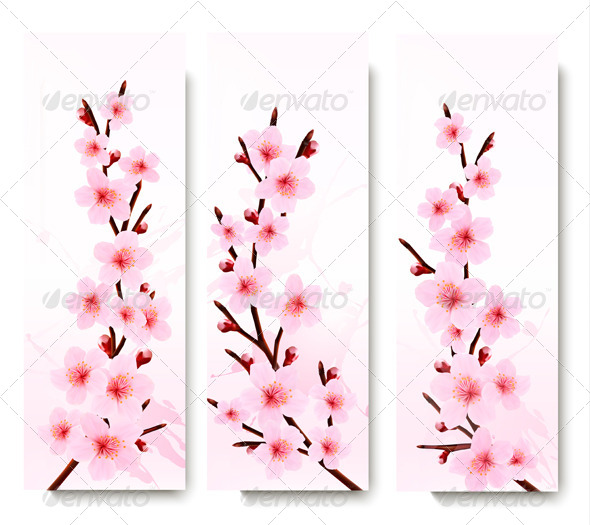 Three Spring Banners with Blossoming Sakura Branch - Flowers & Plants Nature