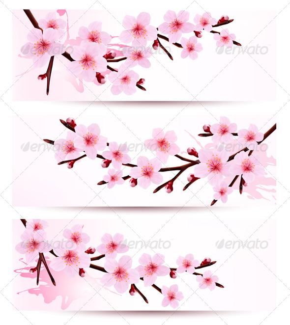 Banners with Sakura Branches - Flowers & Plants Nature