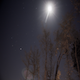 Lone Trees and the Stars - VideoHive Item for Sale