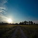 Long Dirt Road Sunset - VideoHive Item for Sale