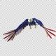 American Eagle - USA Flag - Flying Transition - V - 4K - VideoHive Item for Sale