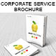 Corporate Management Solutions Brochure - GraphicRiver Item for Sale