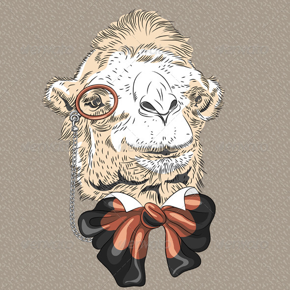 Camel Hipster - Animals Characters
