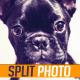 Split Photo Slide - VideoHive Item for Sale