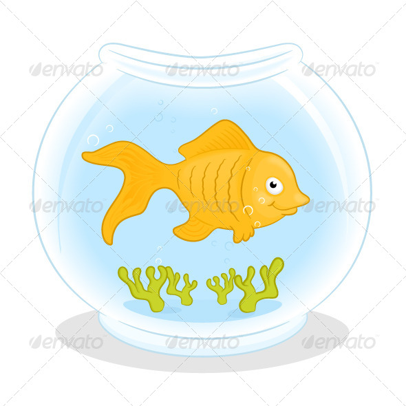 Gold Fish - Animals Characters