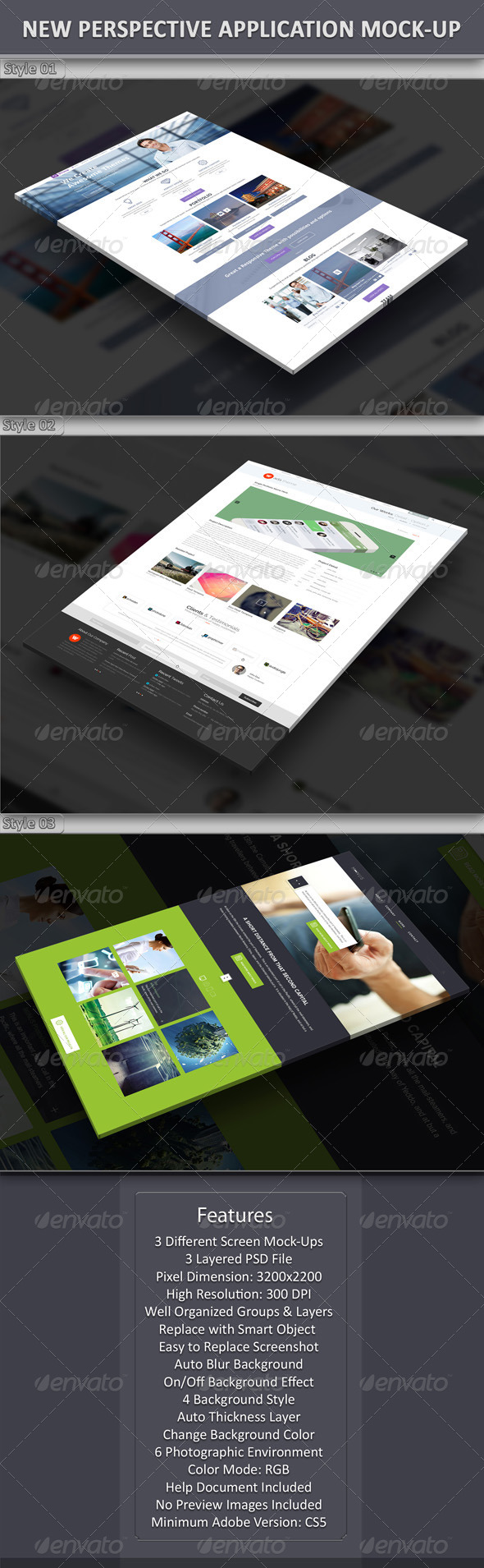 New Perspective Application Mock-Up - Website Displays