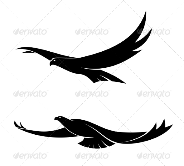 Two Graceful Flying Birds - Animals Characters
