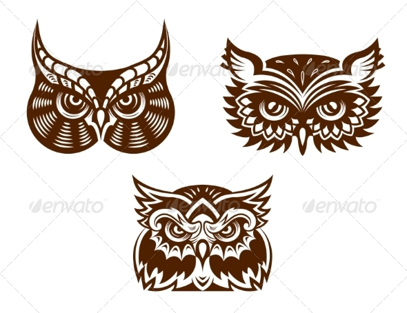 Collection of Owl Faces - Animals Characters