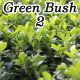 Green Bush 2 - VideoHive Item for Sale