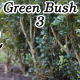 Green Bush 3 - VideoHive Item for Sale