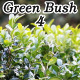 Green Bush 4 - VideoHive Item for Sale