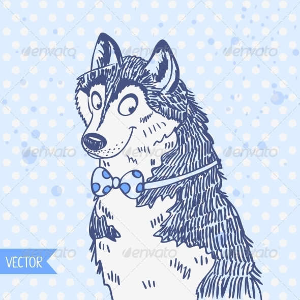 Husky - Animals Characters