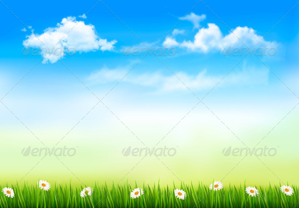 Nature Background with Green Grass and Sky - Nature Conceptual
