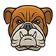 Bulldog Head - GraphicRiver Item for Sale