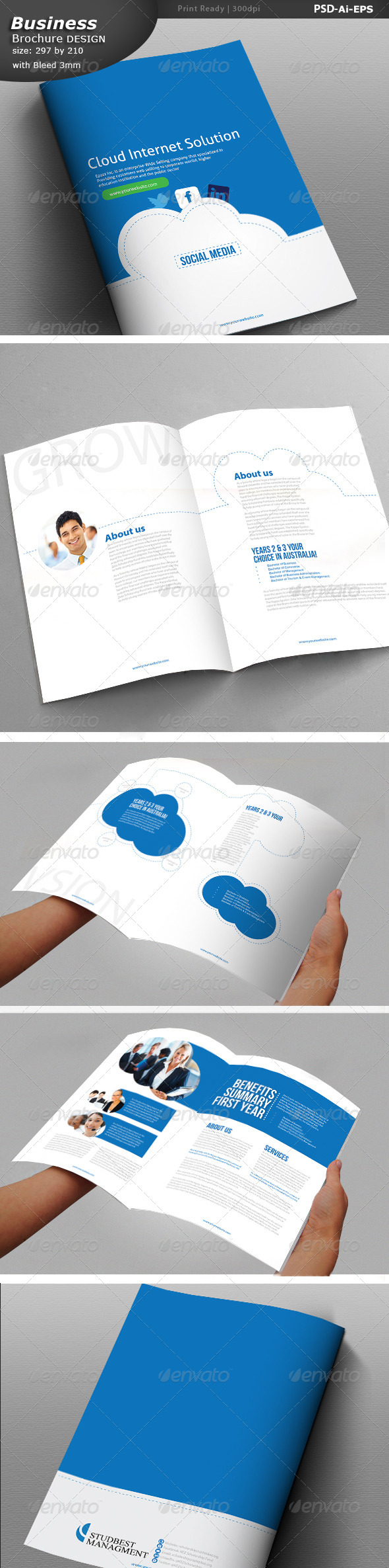 Cloud Social Media  Business Brochure - Brochures Print Templates