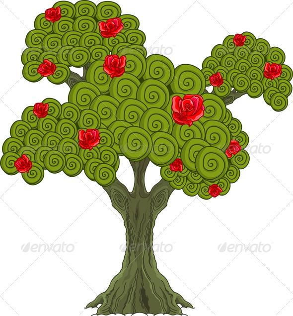 Wonder Tree  - Flowers & Plants Nature