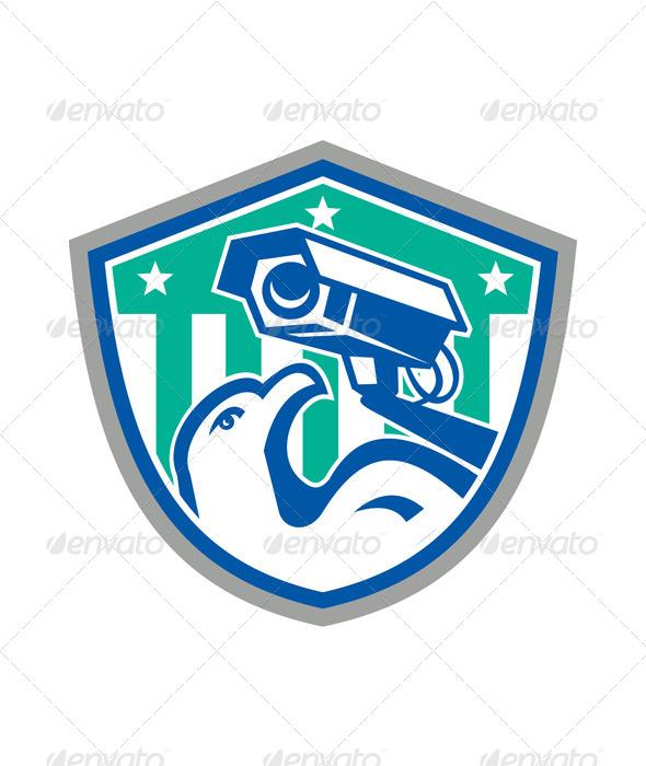 Eagle Security CCTV Camera Retro Shield - Technology Conceptual