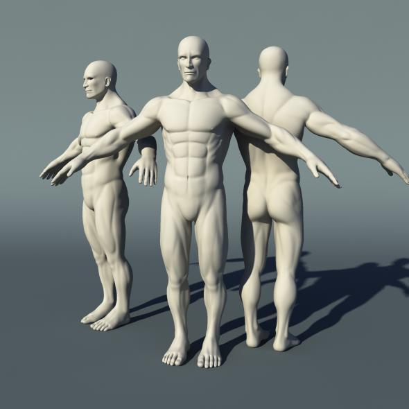 Male Human Body Anatomy High Poly Mesh by amardeep | 3DOcean