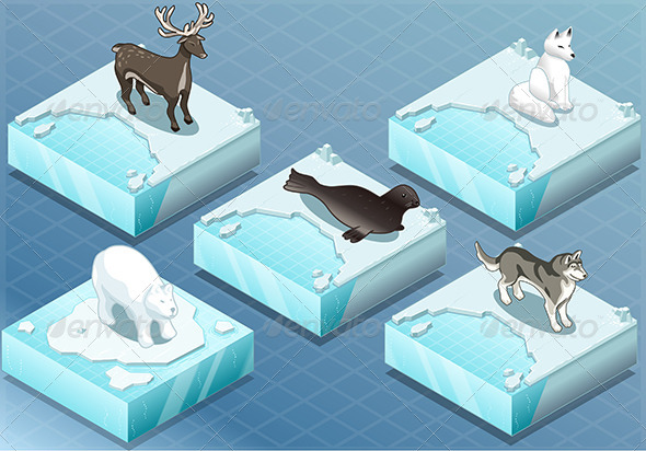 Isometric Arctic Animals on Ice - Animals Characters