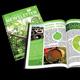EcoGreen Newsletter - GraphicRiver Item for Sale