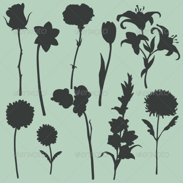 Set of Flower Silhouettes - Flowers & Plants Nature