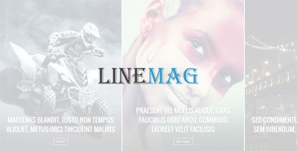 LineMag - Blog / Magazine WordPress