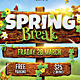 Spring Break / Summer Party Flyer - GraphicRiver Item for Sale