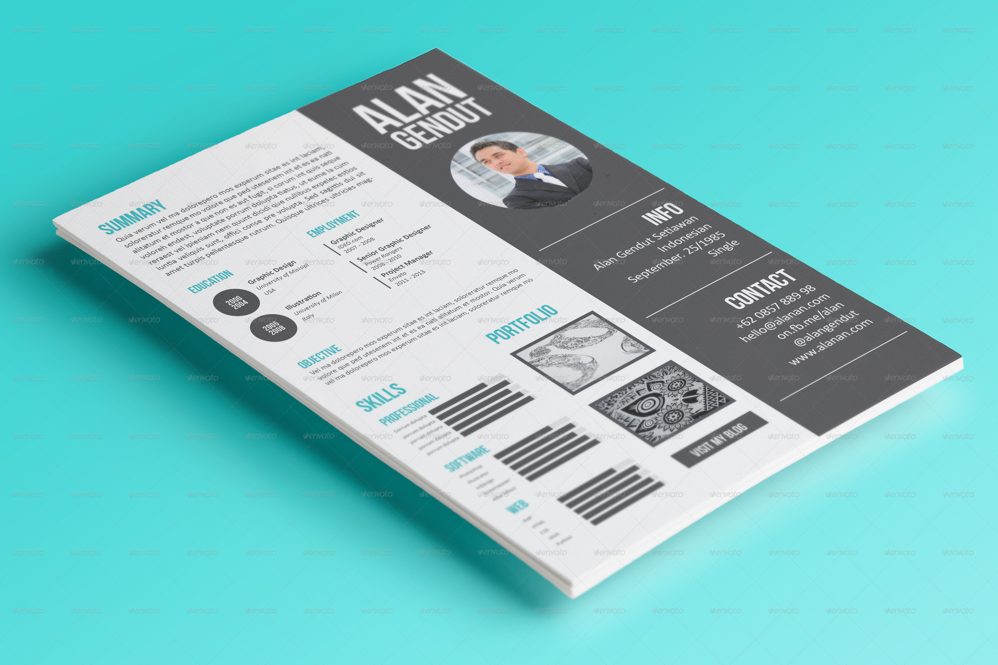 modern resume template envanto modern resume template