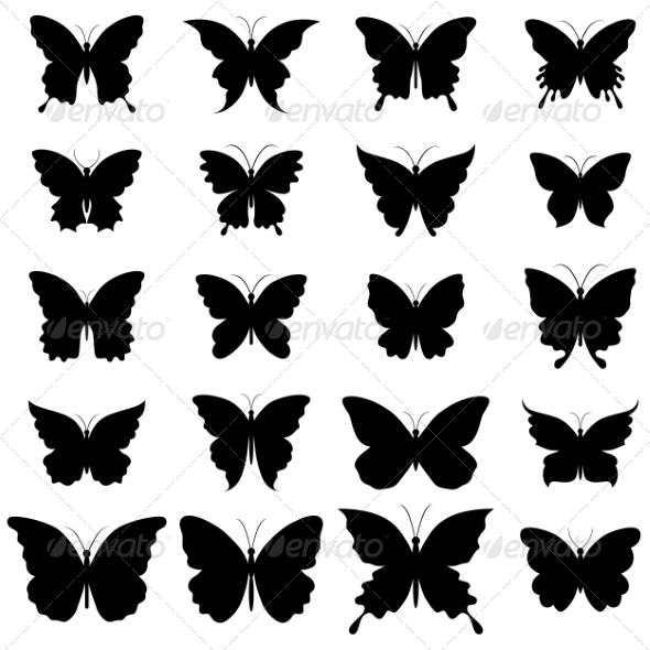 Set of Butterflies for Design - Decorative Symbols Decorative