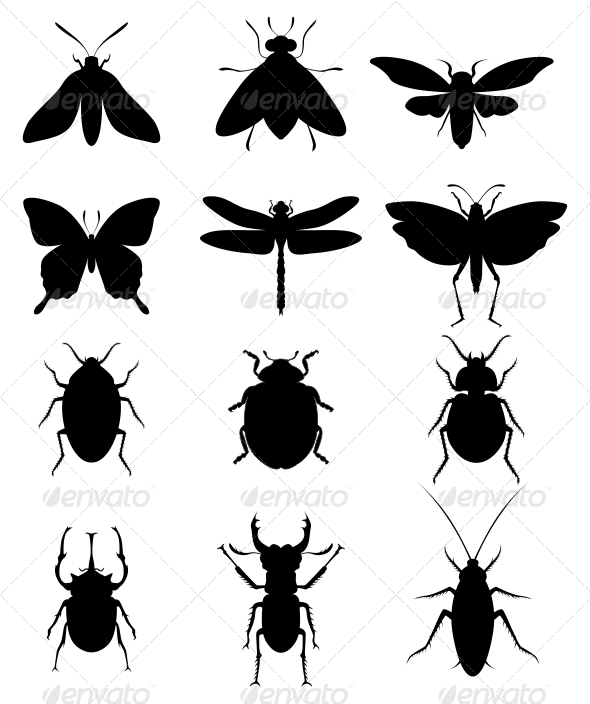Insect Silhouettes - Animals Characters