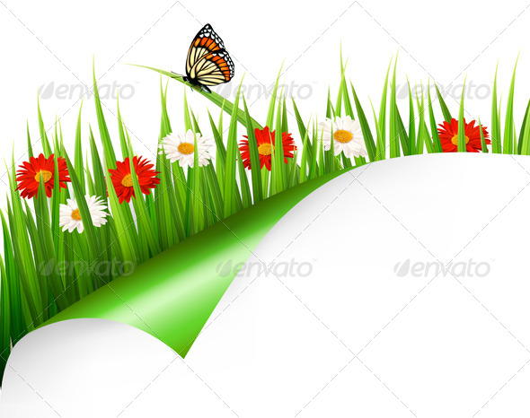 Spring Background with Flowers, Grass and Butterfly - Flowers & Plants Nature