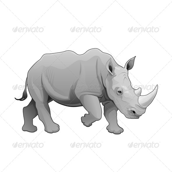 Rhinoceros  - Animals Characters