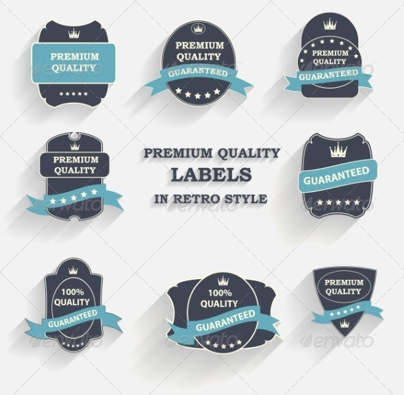 Premium Quality Label Set in Retro Style - Web Technology