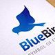Blue Flying Bird Logo Template - GraphicRiver Item for Sale
