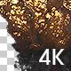 Massive Explosion - VideoHive Item for Sale