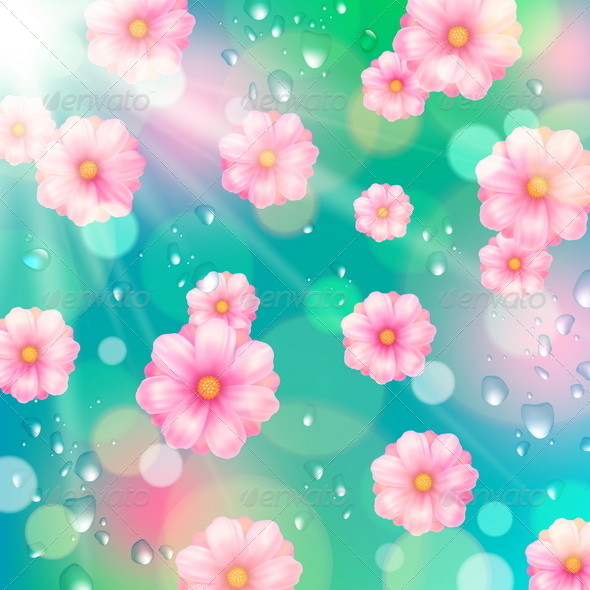 Pink Spring Flowers and Water Drops. - Flowers & Plants Nature