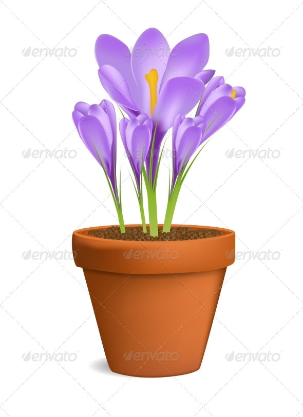 Flowerpot - Backgrounds Decorative