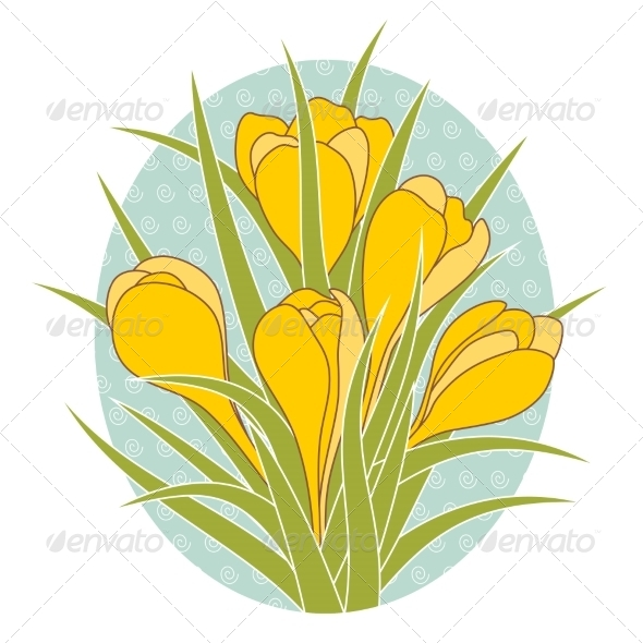 Crocus Flowers - Flowers & Plants Nature
