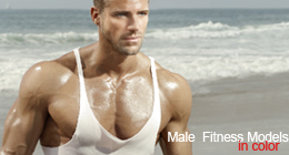 Fitness Male Models in Color